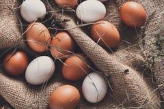 Huevos marrones del pollo fresco en el lino, fondo de la agricultura biológica Foto de archivo libre de regalías