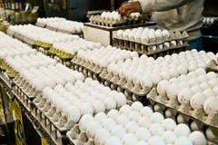 Huevos, mercado, Jerusalén, Israel Imagenes de archivo