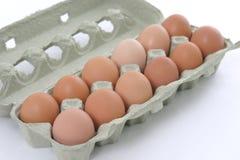 Huevos naturales Foto de archivo