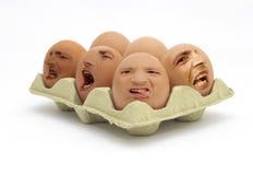 ¡Huevos no libres del rango! Foto de archivo libre de regalías