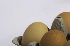 Huevos orgánicos Fotografía de archivo libre de regalías