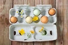 Huevos orgánicos con las flores Fotografía de archivo