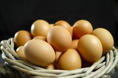 Huevos orgánicos del pollo del brouw de la granja de granja Imagen de archivo
