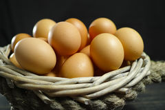 Huevos orgánicos del pollo del brouw de la granja de granja Fotos de archivo libres de regalías