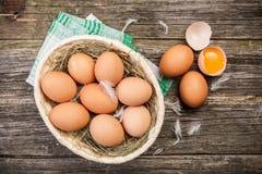 Huevos orgánicos frescos Fotos de archivo