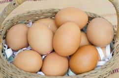 Huevos orgánicos frescos en cubo Imagen de archivo
