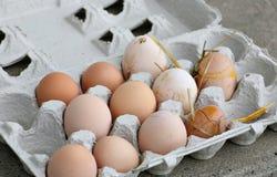 Huevos orgánicos frescos sucios Fotos de archivo