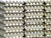 Huevos para la venta Foto de archivo