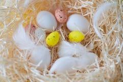 Huevos, pascua, plumas, amarillo, blanco, coloreado, brillante, día de fiesta, huevos de Pascua, heno Fotos de archivo libres de regalías