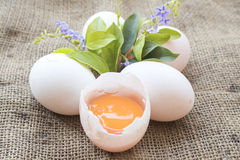 Huevos populares de las comidas crudos en el saco viejo Imagen de archivo