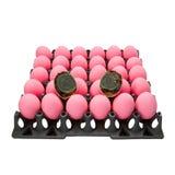 Huevos preservados del pato Foto de archivo libre de regalías