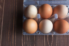 Huevos puestos en células imágenes de archivo libres de regalías