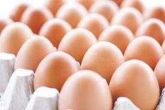 Huevos que cocinan para el desayuno, una yema de huevo de la forma de la proteína y el albumen en un fondo blanco, o en una tabla foto de archivo libre de regalías