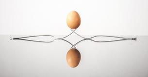 Huevos reflejados Foto de archivo libre de regalías