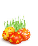Huevos rojos y amarillos e hierba verde Foto de archivo libre de regalías