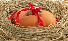 Huevos sin procesar Fotos de archivo