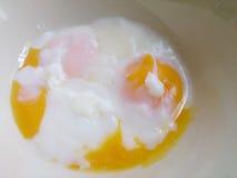 Huevos Soft-boiled Foto de archivo libre de regalías