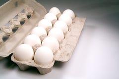 Huevos una docena Imagen de archivo libre de regalías