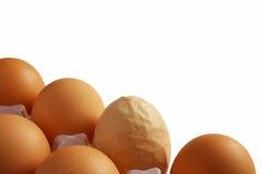 Huevos. Uno interesante Foto de archivo