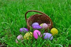Huevos y cesta de Pascua Foto de archivo libre de regalías
