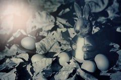 Huevos y conejo coloridos de Pascua en las hojas secas Fotos de archivo libres de regalías