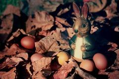 Huevos y conejo coloridos de Pascua en las hojas secas Imágenes de archivo libres de regalías