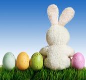 Huevos y conejo de Pascua en hierba verde con el cielo azul Foto de archivo libre de regalías