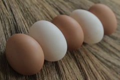 Huevos y huevos del pato con el fondo de las hierbas Imágenes de archivo libres de regalías