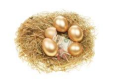 Huevos y dinero del oro Imagen de archivo libre de regalías