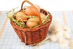 Huevos y flores Foto de archivo libre de regalías