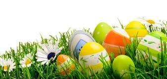 Huevos y flores de Pascua en la hierba, aislada Imágenes de archivo libres de regalías