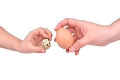 Huevos y mano de codornices Imagenes de archivo