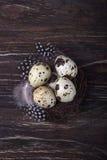 Huevos y plumas de codornices en jerarquía en el fondo de madera Visión superior, espacio libre Imagen de archivo libre de regalías