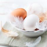 Huevos y plumas en un tazón de fuente Imagen de archivo