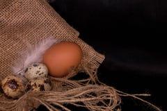 Huevos y pollo de codornices en el despido Fondo negro extracto de la comida Imágenes de archivo libres de regalías