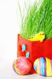 Huevos y pollos coloreados de Pascua en hierba verde Foto de archivo