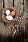 Huevos y sauce Imágenes de archivo libres de regalías