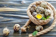 Huevos y yema de huevo manchados de codornices en la cáscara Imagen de archivo libre de regalías