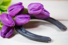 Hufeisen mit Tulpen Stockfotos