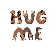 Hug me. Inscription of dog letters. Hug me. Vector inscription of dog letters royalty free illustration