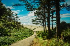 Hug Point, Cannon Beach, Oregon,USA. Pacific Coastline. Hug Point State Park Beach. Cannon Beach, Oregon, USA. Picturesque uncrowded beach with several sandstone Royalty Free Stock Photography