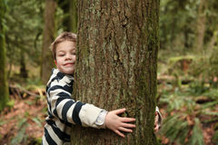 Hug the tree. Young boy hugging a tree Stock Photography