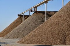 Huge almond piles. Very large piles of almonds ready for processing, different varities Stock Photography