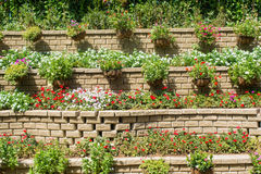 Huge amazing multistorey flowerbeds made from bricks. And full of colourful flowers stock photos