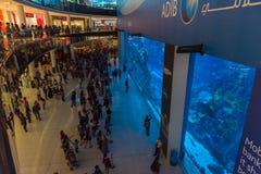 Huge aquarium in Dubai Mall shopping center. UAE, DUBAI - DECEMBER 25: huge aquarium in Dubai Mall shopping center on December 25, 2014 Royalty Free Stock Photos