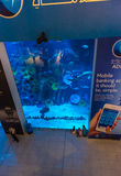 Huge aquarium in Dubai Mall shopping center. UAE, DUBAI - DECEMBER 25: huge aquarium in Dubai Mall shopping center on December 25, 2014 Royalty Free Stock Photography