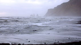 Huge arched black sand beach in Iceland stock footage