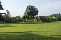 Huge back yard for any outdoor occasion Royalty Free Stock Photography