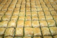 Huge baking tray full of square Baklava Stock Images