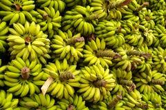 A huge banana stack Royalty Free Stock Photography